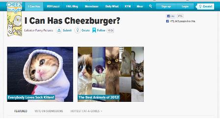 אתר עם חתולם - תמיד מוצלח